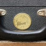 gibson firebird V 1972 medallion - case detail