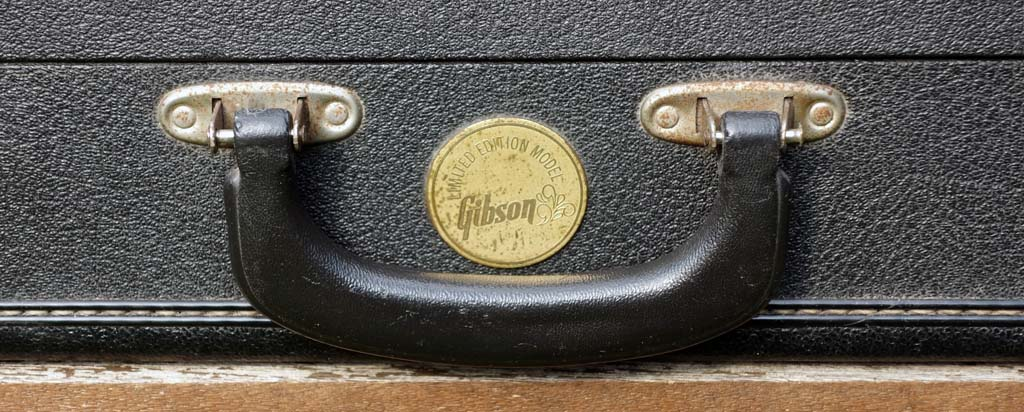 gibson firebird V 1972 medallion - case detail
